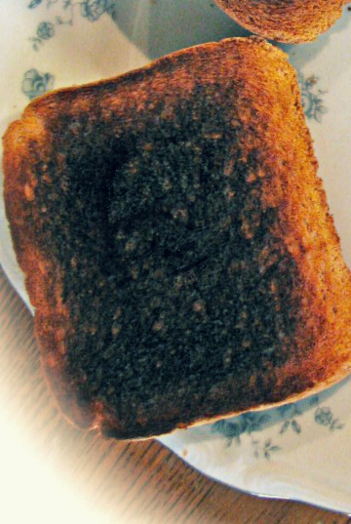 Skrillex Toast